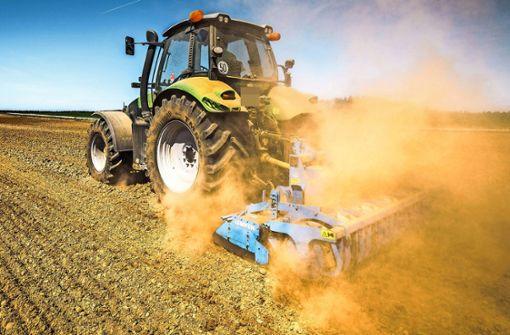 Notschlachtungen und Angst vor schlechter Ernte –  Bauern kämpfen mit der Dürre