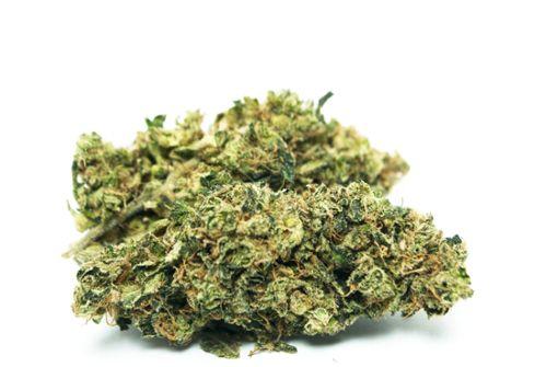 Marihuana-Dealer geht der Polizei ins Netz