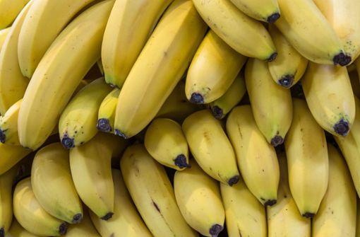 Aldi-Mitarbeiter entdecken halbe Tonne Kokain in Bananenkartons