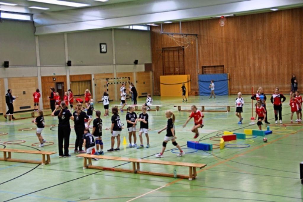 12 Jugend-Handballmannschaften kamen am Sonntag zum vorerst letzten Spieltag in der Sporthalle des Solitude-Gymnasiums zusammen. Foto: Martin Braun