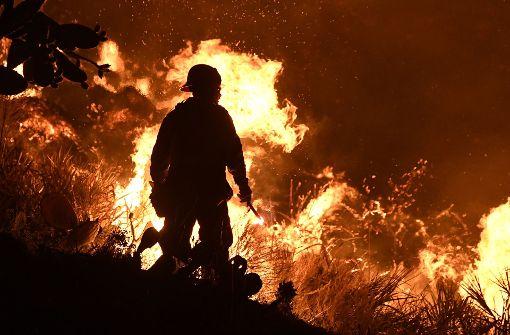 Schwere Waldbrände - Zehntausende auf der Flucht