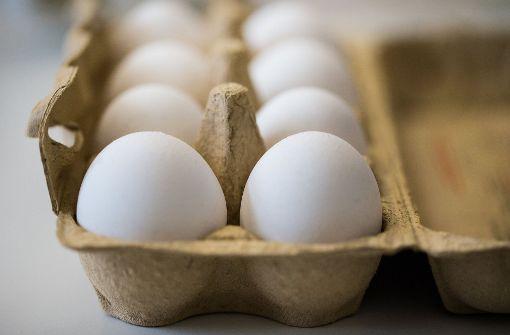 Eier des verdächtigen Betriebs sind pestizidfrei