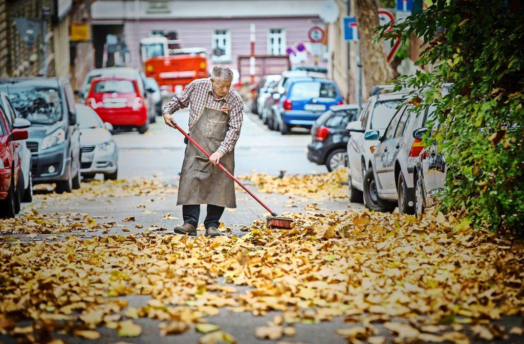 Der Dialektforscher Hubert Klausmann ist durch ganz Baden-Württemberg gereist, um die Mundart-Vielfalt zu dokumentieren. Er weiß, wo die Kehrschaufel als Bezischaufel, als Kutterschaufel oder als Schüppe bezeichnet wird. Foto: Lichtgut/Achim Zweygarth