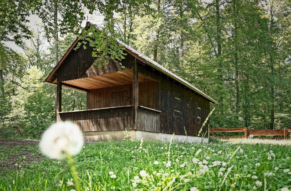 In der Flachter Waldhütte feiern die Realschüler aus Weil der Stadt ihren Abschluss. Foto: factum/