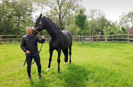 Ein Stück mehr Lebensfreude  für 70 Pferde