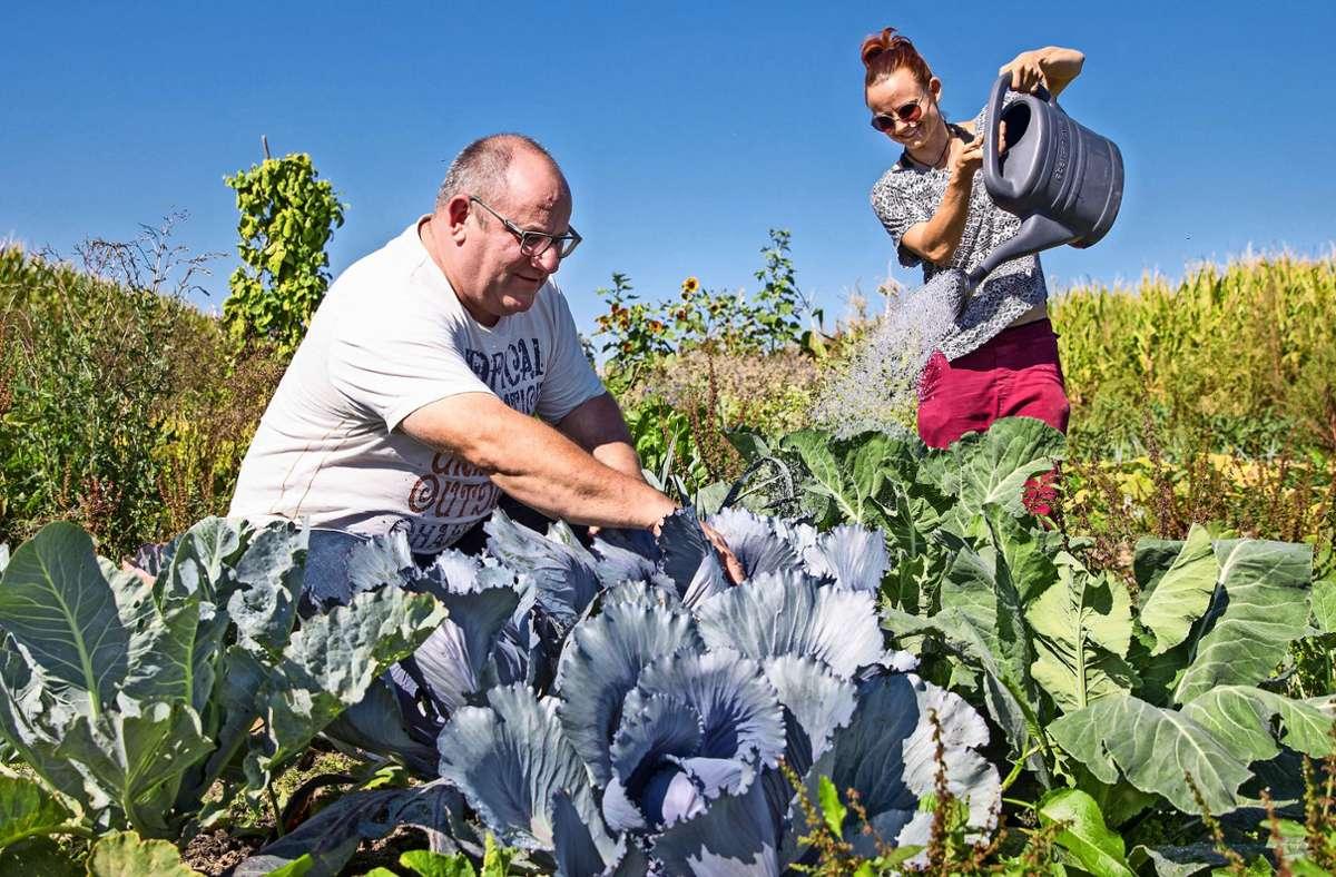 Jürgen Benignus und Elisabeth Späth hatten die Gärtner-Idee. Foto: Frank Eppler