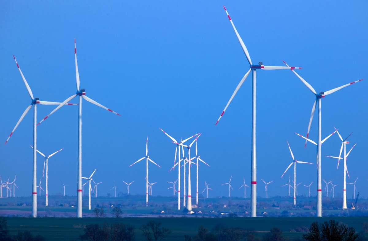 Transformation führt zu einer Industrialisierung der Landschaften. Foto: dpa/Jens Büttner