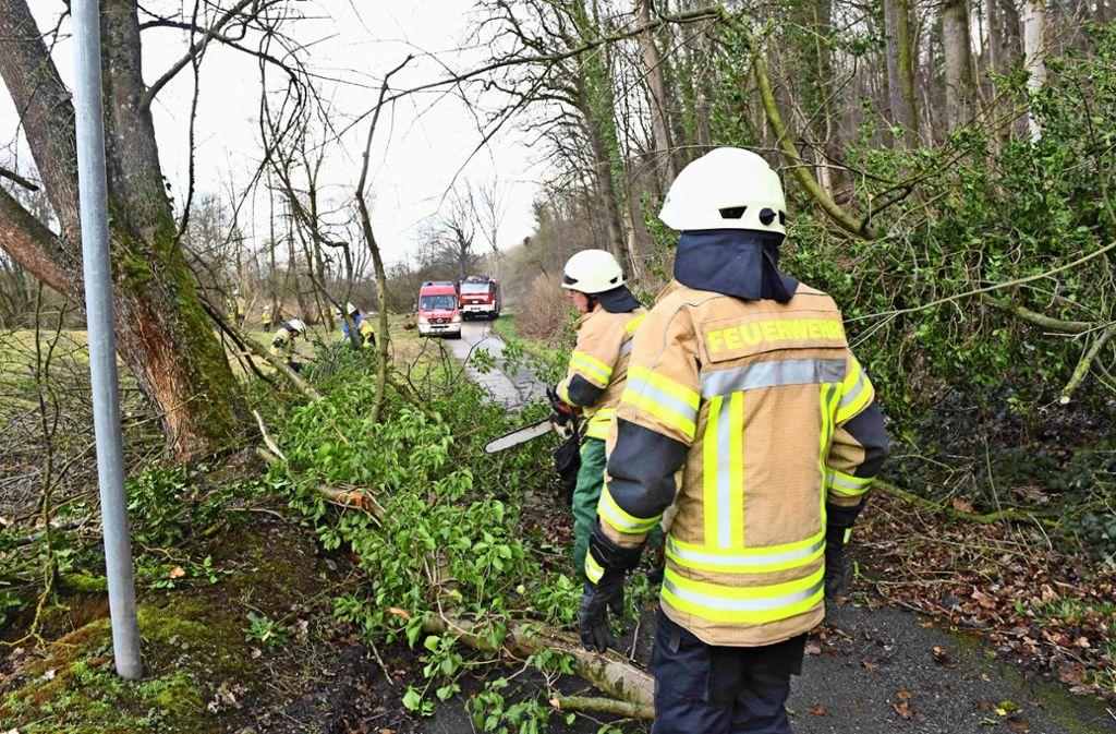 Die Feuerwehr befreite den Radweg nach Stuttgart-Hofen von einem umgestürzten Baum. Foto: Feuerwehr/Alexander Ernst