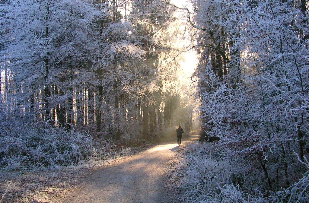 Kommt pünktlich zum Dezemberanfang der Winter mit Schnee nach Stuttgart? Foto: Leserfotograf toller-ede