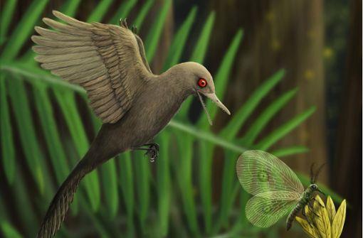 Der Mini-Dino aus der Urzeit