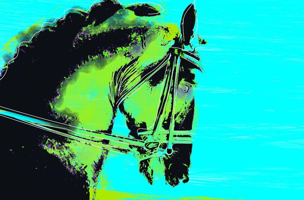 Wo ist Totilas, das vermeintliche Wunderpferd, das in Wahrheit nie eines war, heute? Foto: Sebastian Ruckaberle