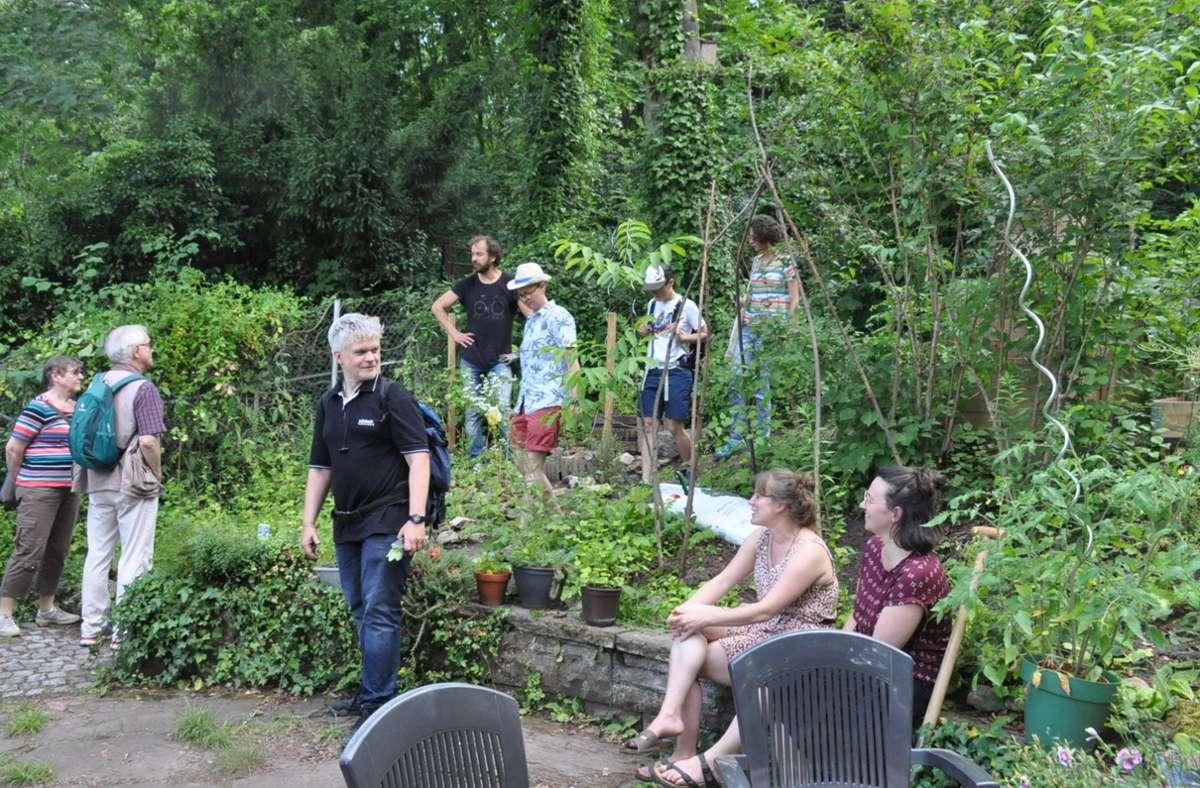 Abgeschieden vom Lärm am Stöckach bietet der Bürgergarten Ruhe und Erholung. Foto: /Georg Linsenmann