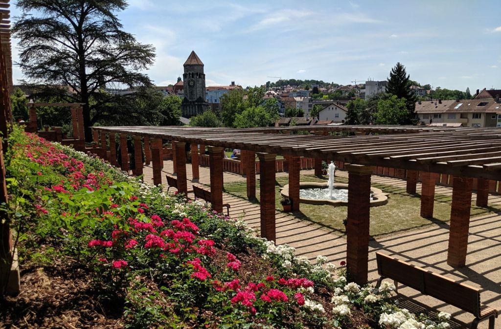 Der Rosengarten im Park der Villa Berg: Dort gibt es seit diesem Sommer wieder viele Rosenstöcke und eine neu aufgebaute Pergola. Foto: Jürgen Brand