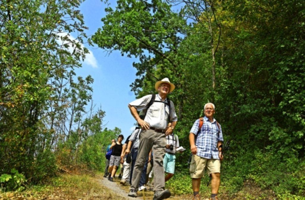 Der Weg ist das Ziel: Winfried Kretschmann erkundet  das Land. Den Anfang machte er am Montag auf dem Neckarsteig bei Mosbach. Foto: Staatsministerium