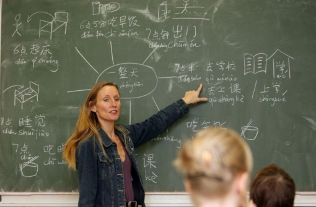 Wer an Gymnasien unterrichtet, soll nach dem Willen Schmiedels eine eigene Ausbildung bekommen. Foto: dpa-Zentralbild