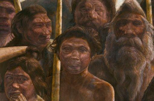 Forscher präsentieren 400.000 Jahre altes Erbgut