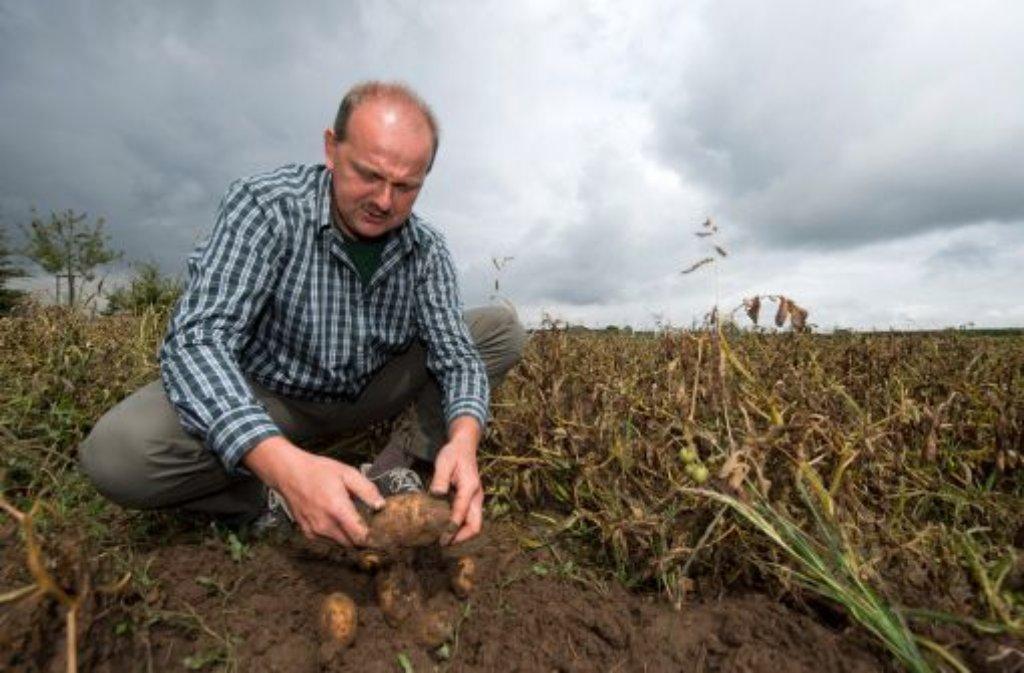 Langer Winter, nass-kaltes Frühjahr und Unwetter im zu trockenen Sommer: Wetterkapriolen haben den Bauern im Südwesten bei der Ernte zu schaffen gemacht. Foto: dpa