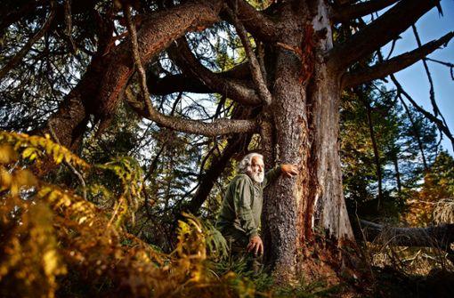 Ein Ökorebell  kämpft für den   Wald