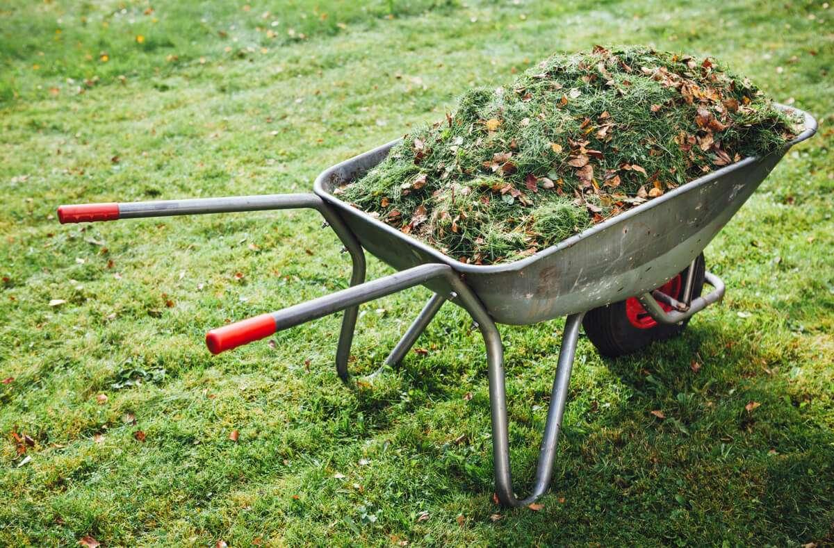 In diesem Artikel zeigen wir Ihnen 6 Möglichkeiten, wie Sie Grünschnitt und Grünabfall entsorgen können. Foto: Nikkytok / Shutterstock.com