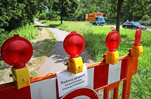 Bauhof-Mitarbeiter durch Eichenprozessionsspinner verletzt