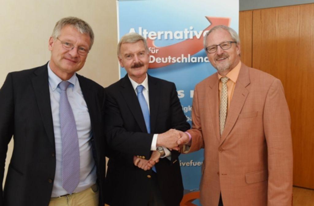Das neue Dreigestirn der Alternative für Deutschland in Baden-Württemberg: Jörg Meuthen, Lothar Maier und Bernd Grimmer (von links). Foto: dpa
