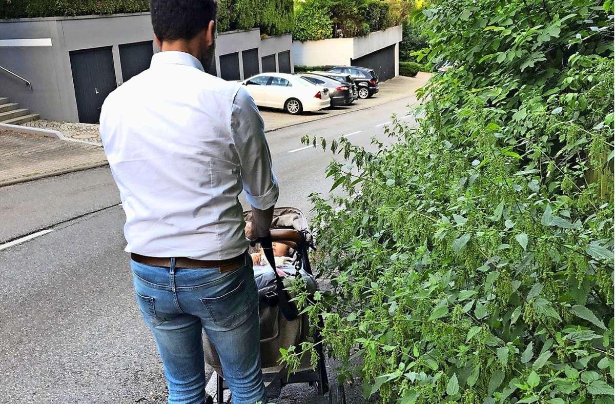 Mit dem Kinderwagen sei der Weg an dieser Stelle durch die wild wuchernden Brennnesseln unpassierbar geworden  – und das Ausweichen auf die Straße ist  gefährlich, sagen Betroffene aus dem Dachswald. Foto: z/privat