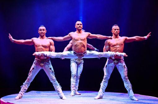 Die Jungs von White Gothic sind die Gewinner des Circus Festival China 2018 und kommen nun zum Weltweihnachtscircus nach Stuttgart.
