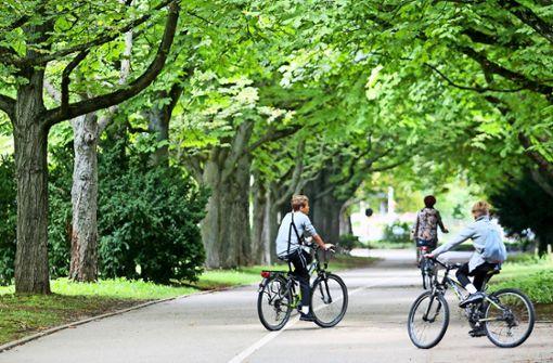 Landesgartenschau: Diesmal soll es klappen