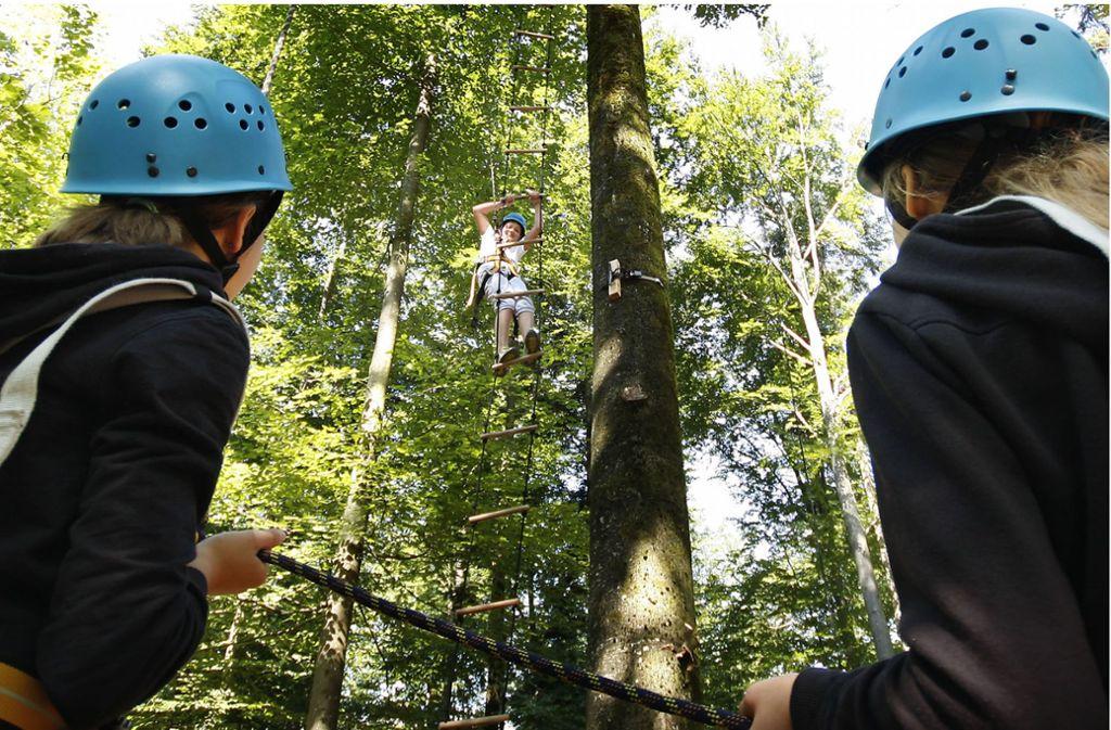 Ab nach oben: In Kletterparks und Hochseilgärten kann man seinen Wagemut testen. Foto: FACTUM-WEISE