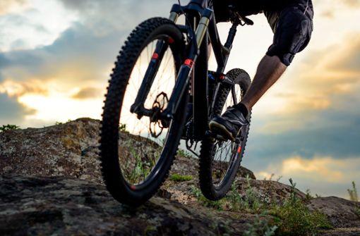 Bergwacht rettet abgestürzten Mountainbiker