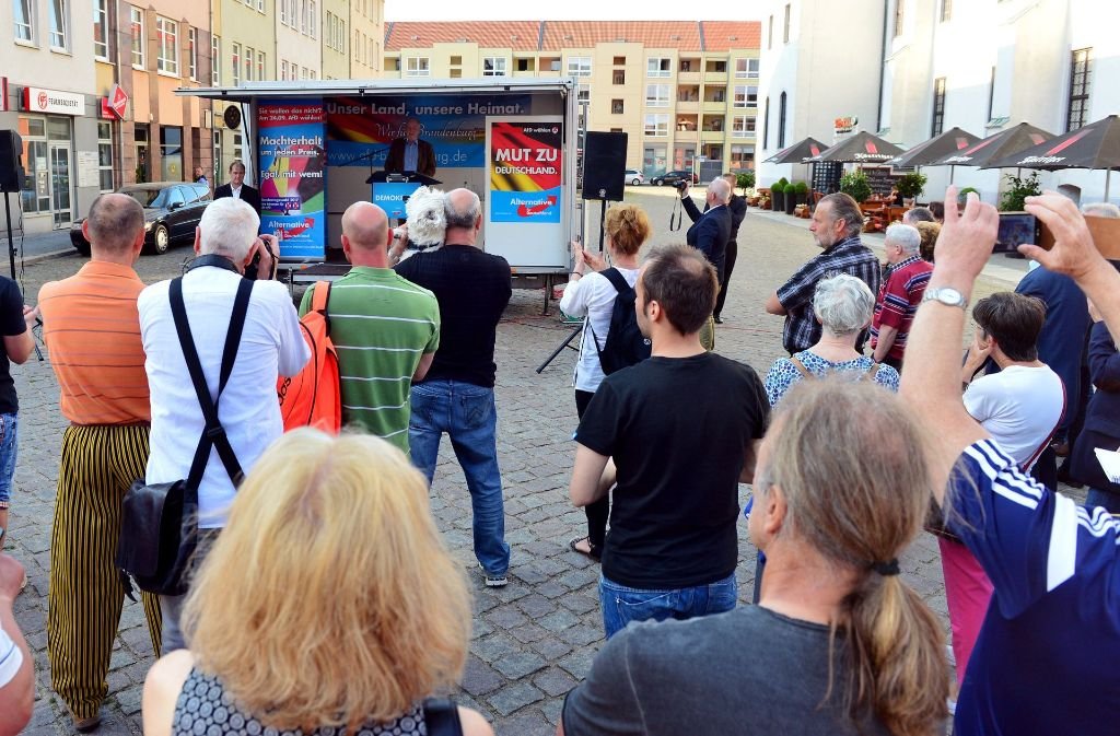 Wahlkampfkundgebung der AfD in Frankfurt/Oder. Spitzenkandidat Alexander Gauland spricht. Foto: dpa