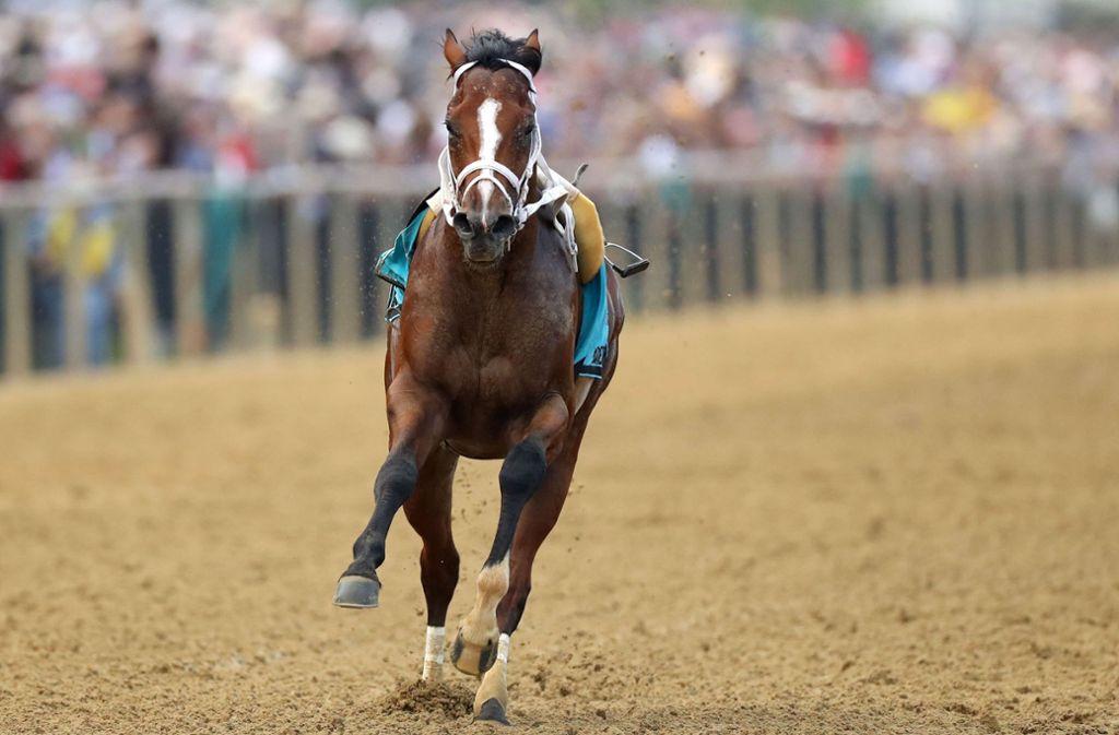 Bodexpress – zur Abwechslung mal ohne Jockey unterwegs. Foto: AFP