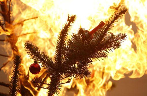 Was tun, wenn der Baum brennt