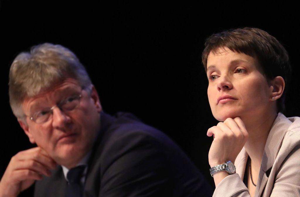 Jörg Meuthen und Frauke Petry wirbeln mit der AfD die deutsche Parteienlandschaft auf. Foto: dpa