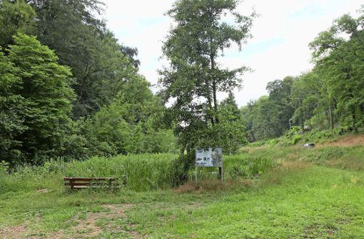 Stadt rät  von Eschbachwald-Besuch ab