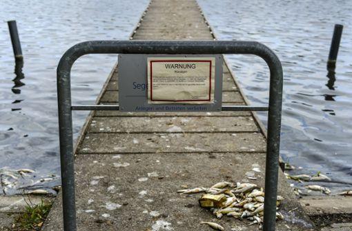 Was passiert mit dem Max-Eyth-See?