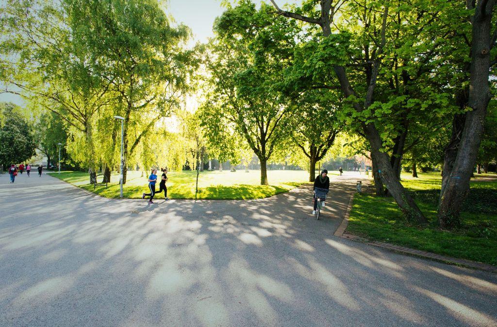 Der Stadtgarten bei der Uni Stuttgart: Die Pflege solcher Grünanlagen bereitet dem Personal des Gartenamts zurzeit Sorgen. Foto: Lichtgut/Verena Ecker