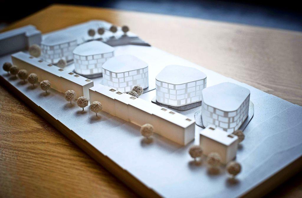 Ein langer Komplex mit Minimalhäusern und fünf als Wolken bezeichnete  gerundete Gebäude Foto: Lichtgut/Max Kovalenko
