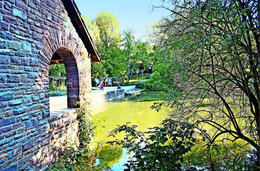 Der Rohrer See hat gleich mehrere Probleme. Foto: Archiv Kai Müller