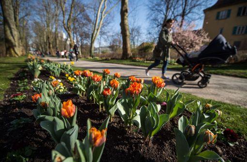 Unsere Highlights für den Frühling in der Region Stuttgart