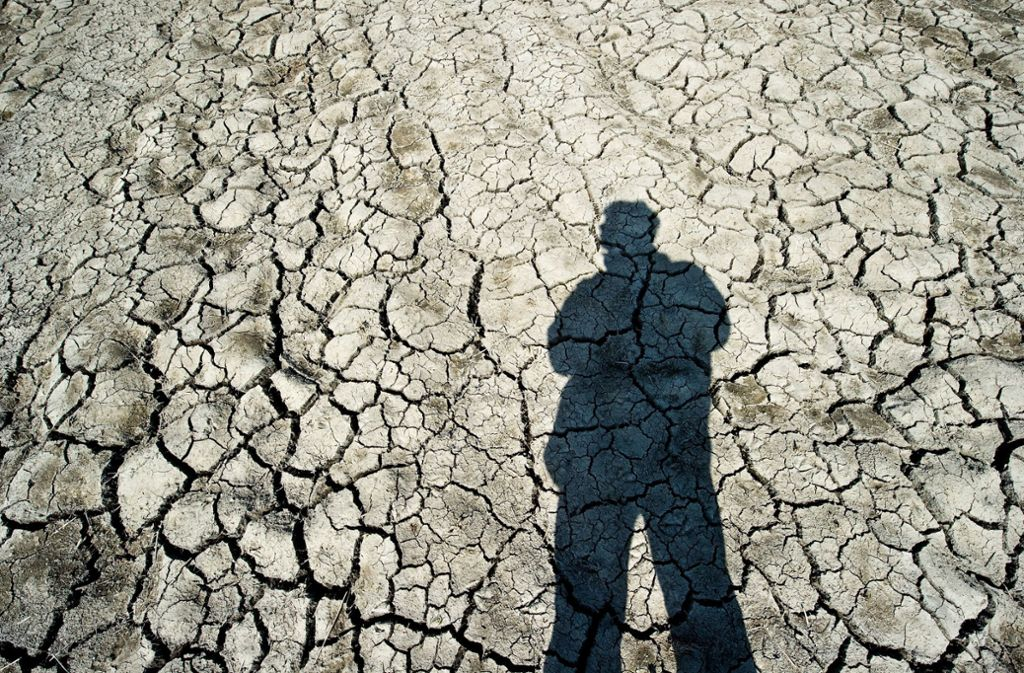 Dünne Schutzhülle und verletzliche Haut der Erde:  Der Mensch tritt den Boden mit Füßen, behandelt ihn wie Dreck, missbraucht ihn als Mülldeponie. Er wird vergiftet und versiegelt, er erodiert und wird weggeschwemmt. Foto: Patrick Pleul dpa/lbn