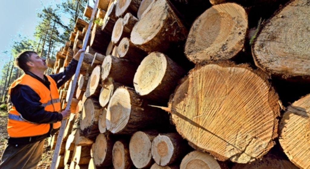 Die Forstkammer  setzt im Streit mit dem Kartellamt auf eine neue Ausgangslage: eine Gesetzesänderung soll dafür sorgen, dass die Einheitsforstämter  erhalten bleiben. Foto: dpa