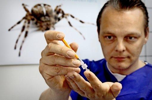 Über den Faden der Spinne kann Philip Zeplin richtig ins Schwärmen geraten. Foto: factum/Granville