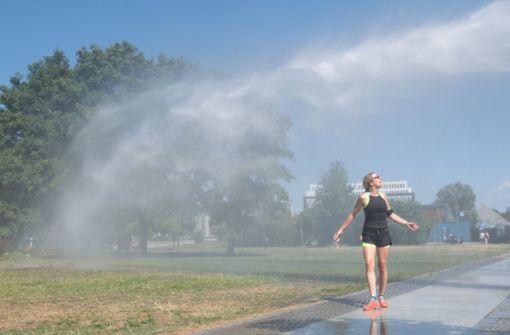 Verwaltung verbietet Rasen zu bewässern – Hohe Strafen