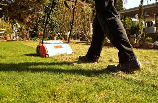 In diesem Artikel zeigen wir Ihnen die 10 wichtigsten Tipps, wie Sie Ihren Rasen schonend und effektiv vertikutieren.