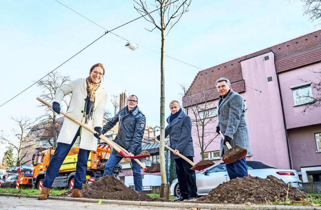 Brigitte Preuß, Dirk Thürnau,  Volker Schirner und  Manfred Boschatzke beim Pflanzen. Foto: Thomas Niedermueller
