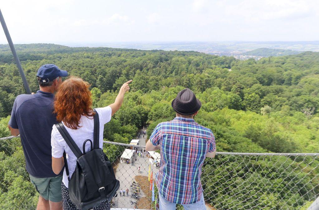 Wer bis zur obersten der drei Plattformen des Schönbuchturms bei Herrenberg klettert, der kann einen weiten Rundumblick genießen. Foto: factum/Granville