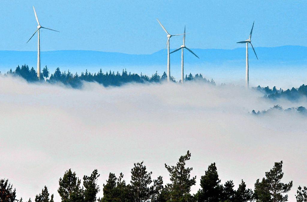 In einem Waldstück, ähnlich der hier abgebildeten Rotoren, soll der Windpark am Goldboden entstehen. Foto: dpa