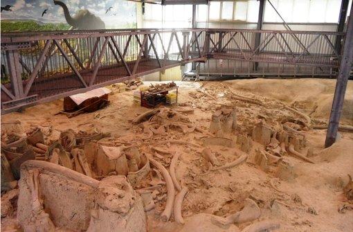 Prähistorisches Gemetzel