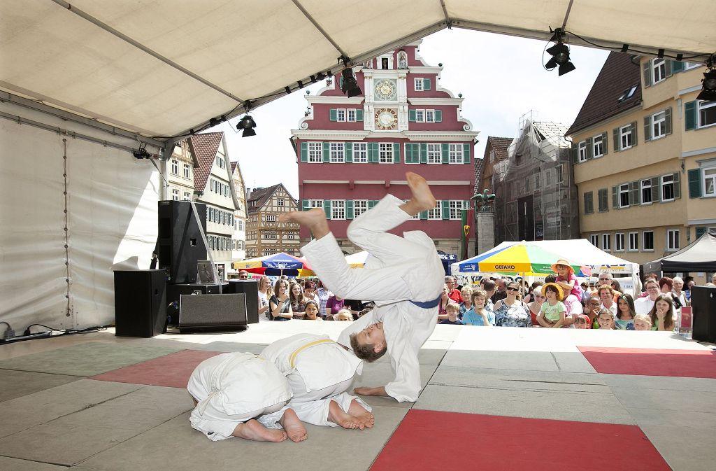 Auch Sportvereine nutzen das Bürgerfest, um auf sich aufmerksam zu machen. Foto: Horst Rudel